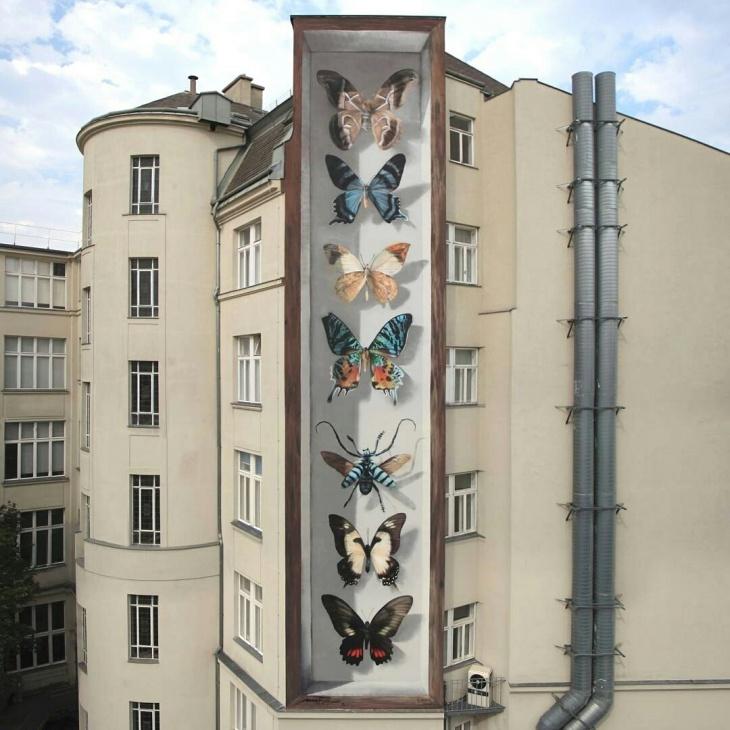 Мега бабочки