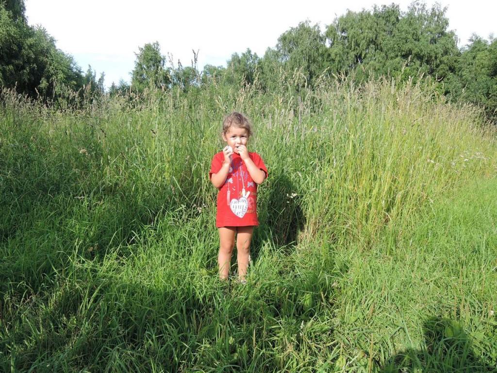 Трава выше меня