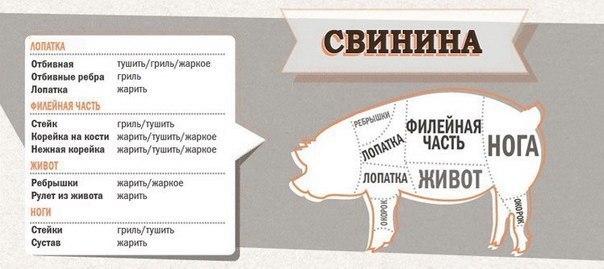 http://mtdata.ru/u3/photoB384/20273307856-0/original.jpg