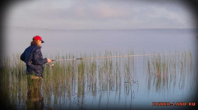 как клюет рыба в северо-западный ветер
