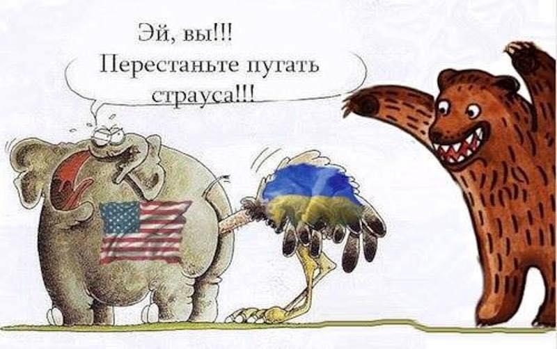 http://mtdata.ru/u3/photoB4A2/20257658979-0/original.jpg
