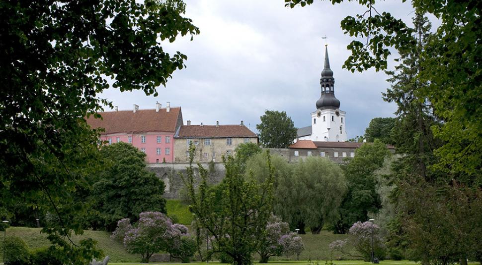 А могли и в морду дать: Эстонские СМИ назвали причину высылки российских дипломатов