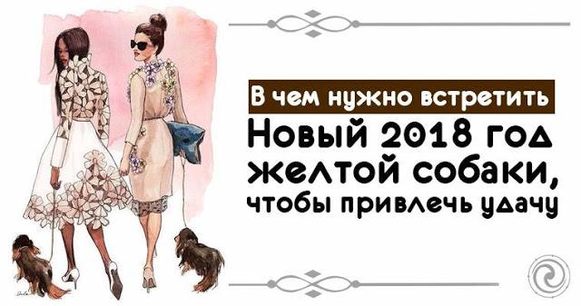 В чем нужно встретить Новый 2018 год желтой собаки, чтобы привлечь удачу