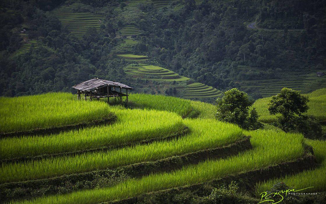 Чарующие фотографии Вьетнама