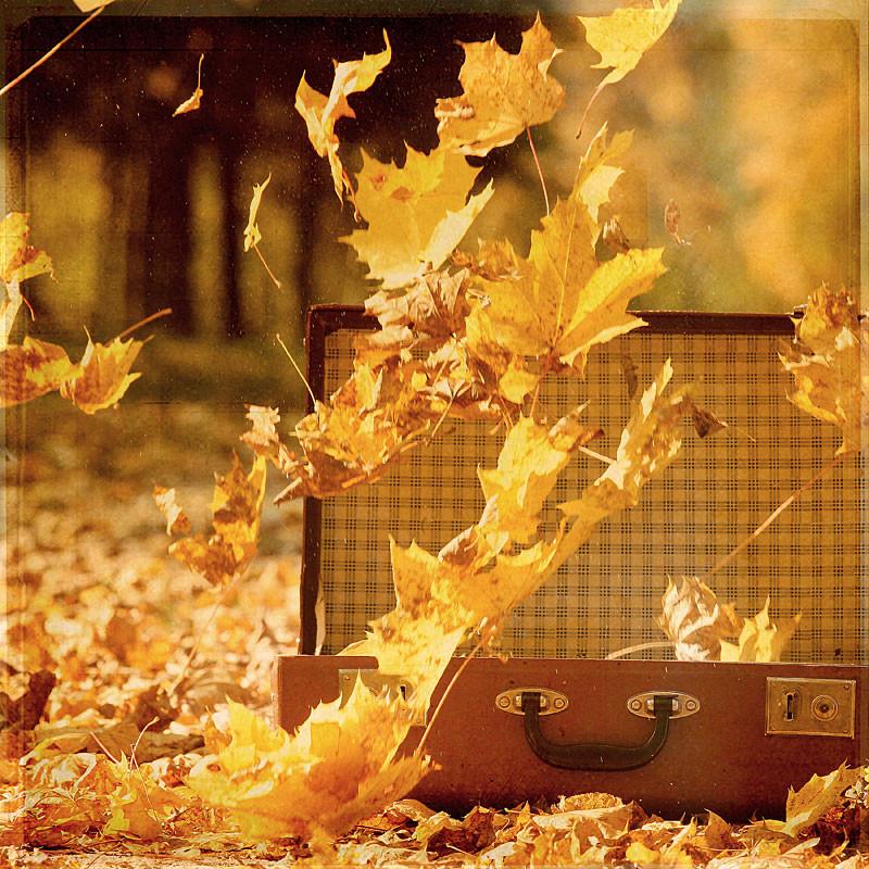 Осень в гости постучалась