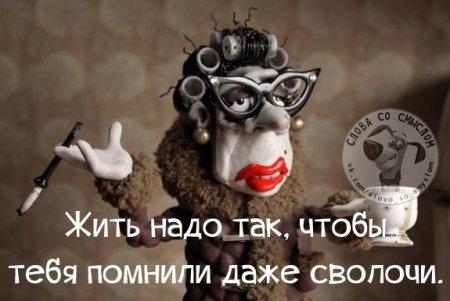 Жизненные двустишия для хорошего настроения!)