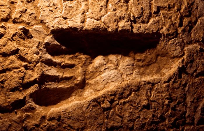 Древнейшие человеческие следы на Земле — что они помогли узнать