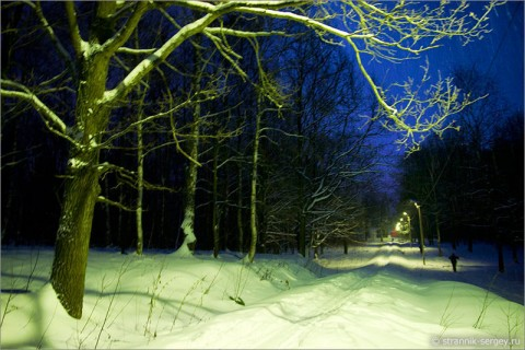 Зима в очаровательных картинках