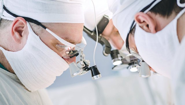 Британские врачи начнут пересаживать детям органы свиней
