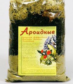 Грунт для ароидных растений это какой грунт