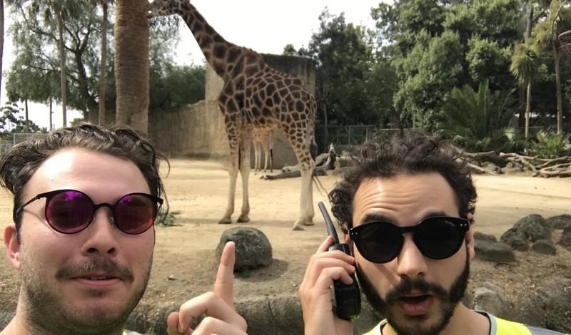 Два парня бесплатно прошли в кино, зоопарк и на концерт с помощью светоотражающих жилеток