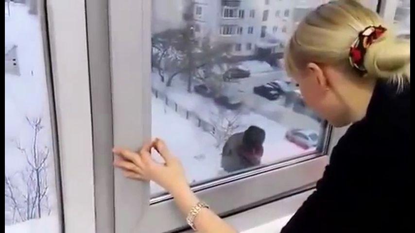 Ворона попросилась войти, и люди открыли ей окно. А потом случилось это…