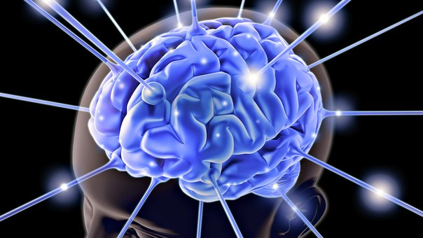 ЖИЗНЬ ЕСТЬ ТО, ВО ЧТО ТЫ ВЕРИШЬ10 вещей, отрицательно влияющих на мозг