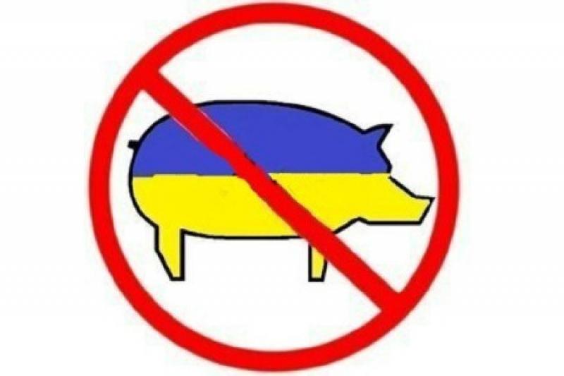 ДНР запретила ввоз товаров с территории Украины
