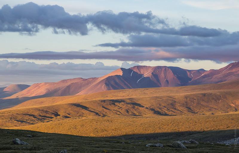 Вечер над плато алтай, путешествия, россия, укок, фото