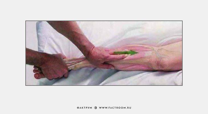 Как делать массаж: 7 картинок для понимания смысла движений рук