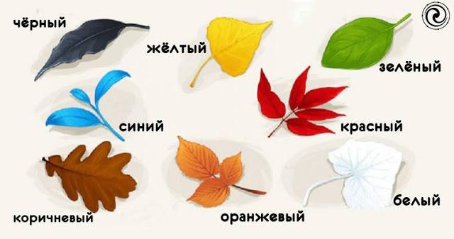 Выберите один из осенних листьев и узнайте новые факты о себе