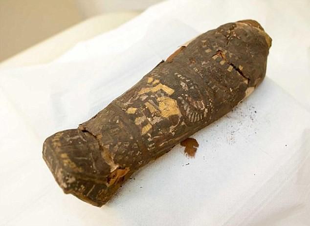 Плод любви фараона? Египетская мумия, которую считали мертвой птицей, оказалась ребенком