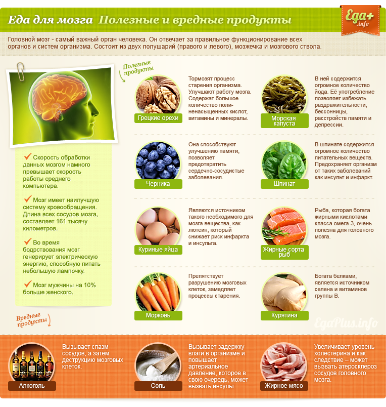http://edaplus.info/illustration/food-for-organs/food-for-brain.png