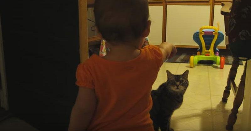 Лучший друг этой малышки – кот. Вы только взгляните, как она с ним разговаривает!