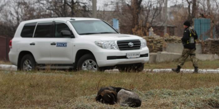 В ОБСЕ прокомментировали инцидент с автомобилем миссии под Луганском