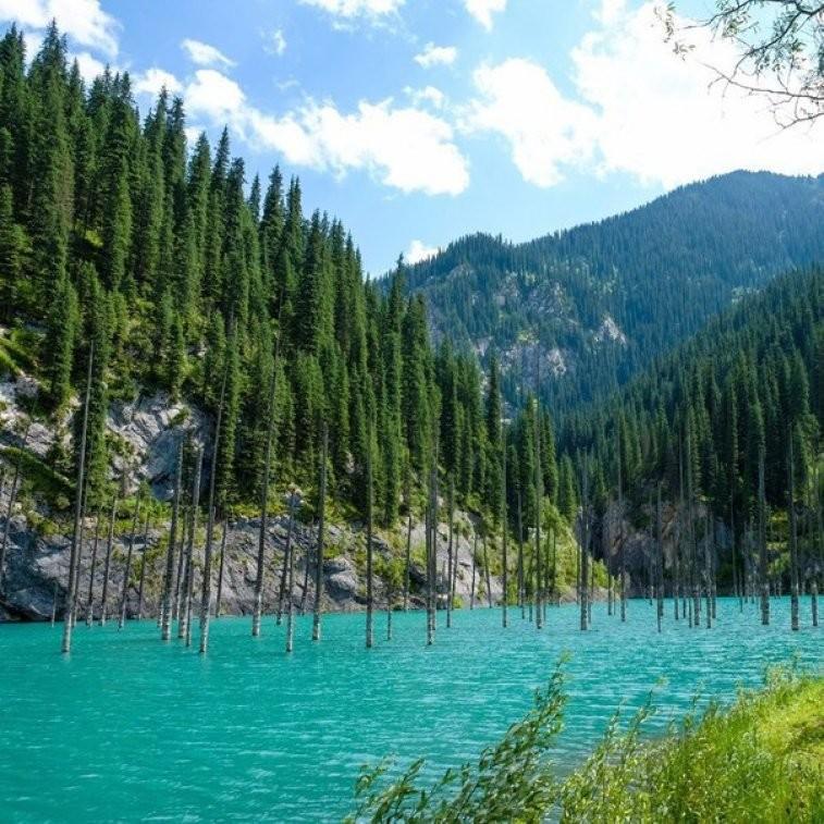 Загадки озера Каинды в Алматинской области Каинды, озеро, природа, факты