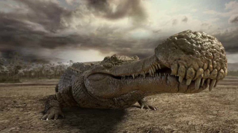 11. Саркозух гигант, животные, планета