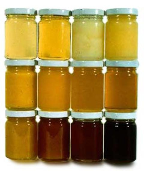 Как мёд влияет на человека