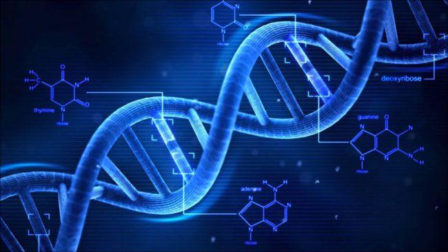 Microsoft записала в ДНК песню Deep Purple