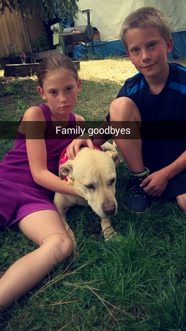 last-day-dying-dog-snapchat-hannah-a9