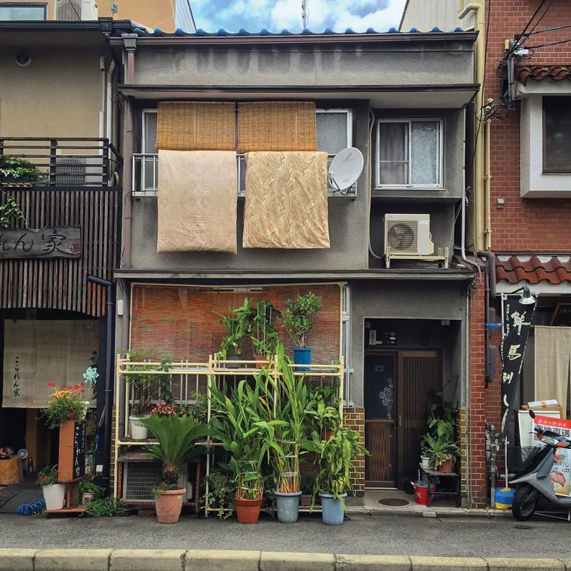Растения в горшках архитектура, дома, здания, киото, маленькие здания, местный колорит, фото, япония