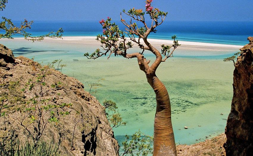 Самый удивительный остров