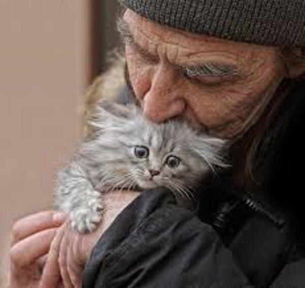 Дед подобрал котенка: завидуют все соседи