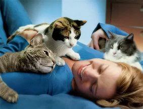6 научных фактов, как домашние животные лечат и продлевают вам жизнь!