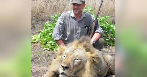 Ветеринар, который позировал на фотографиях с огромным львом, умер при очень странных обстоятельствах!