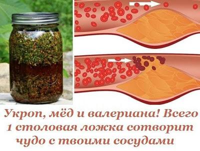 Укроп, мёд и валериана! Всего 1 столовая ложка сотворит чудо с твоими сосудами