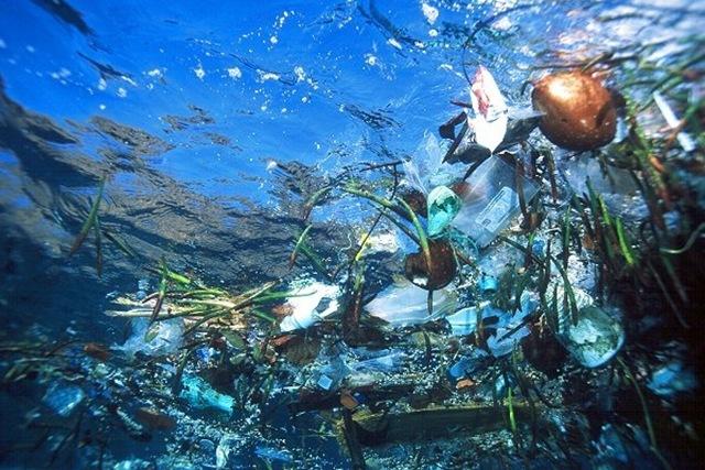 Гигантский мусорный остров Тихого океана