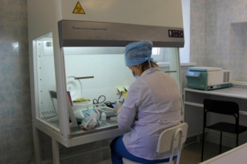 Во Львове - чума, в Запорожье - холера. Украина становится разносчиком заразы
