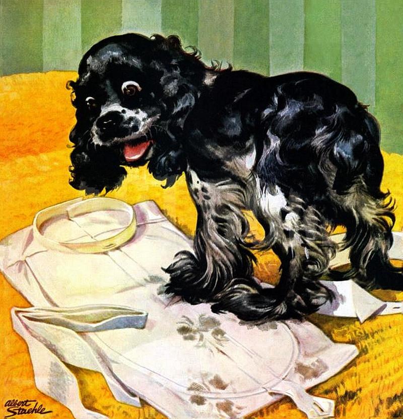 """""""Тот, кто говорит, что счастье не купишь, никогда не покупал щенка"""""""