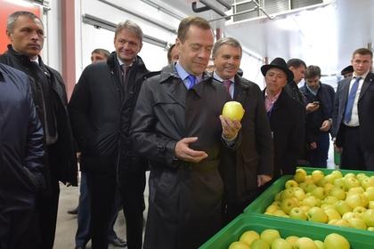 Пора расстаться с иллюзиями,санкции-это надолго: Медведев призвал российских фермеров извлекать из них выгоду