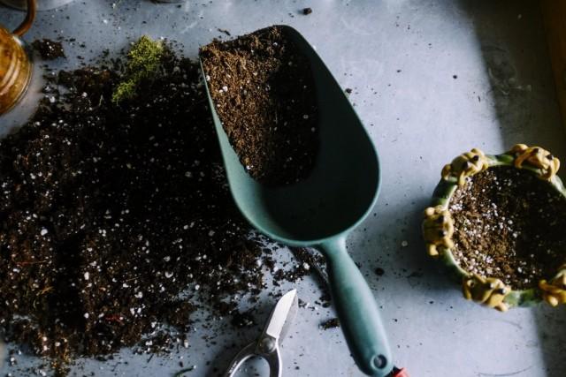 Улучшаем покупной грунт для растений