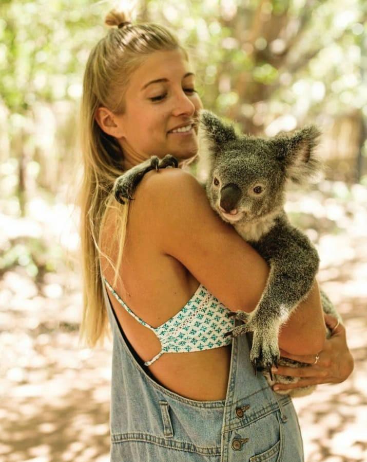 Лучшее место для общения с коалами - Магнитный остров, Квинсленд австралия, доказательство, животные, мир, природа, туризм, фотография