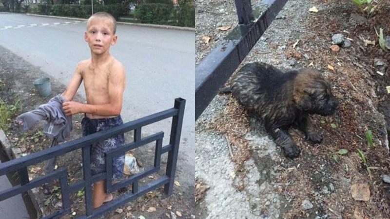 В Ревде 12-летний мальчик спас щенка, едва не утонувшего в сточной канаве животные, спасение