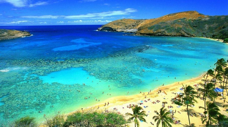 Гавайские острова  были  без…