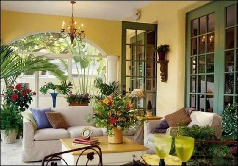 Растения в доме: советы, лайфхаки