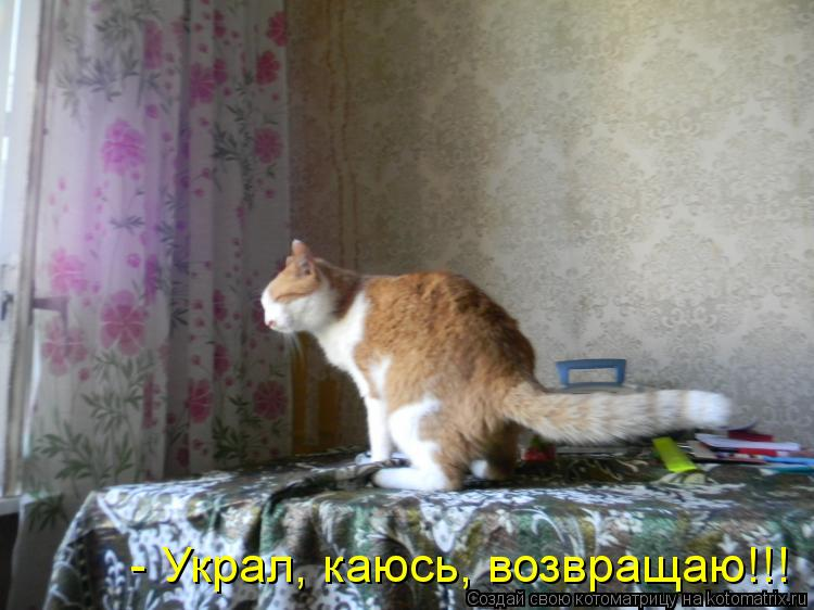 translyatsiya-porno-rolika-v-moskve