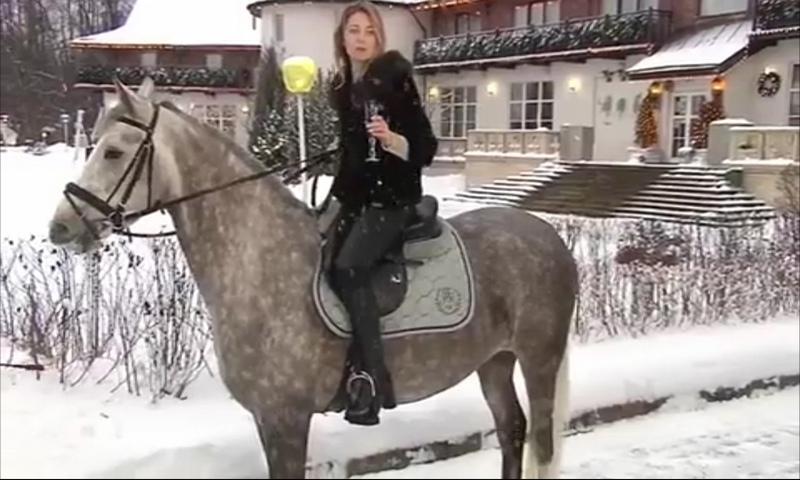 Наталья Поклонская поздравила россиян с наступающим Новым 2019-м годом