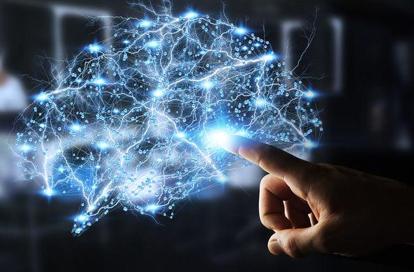 В мозге нашли 11 измерений