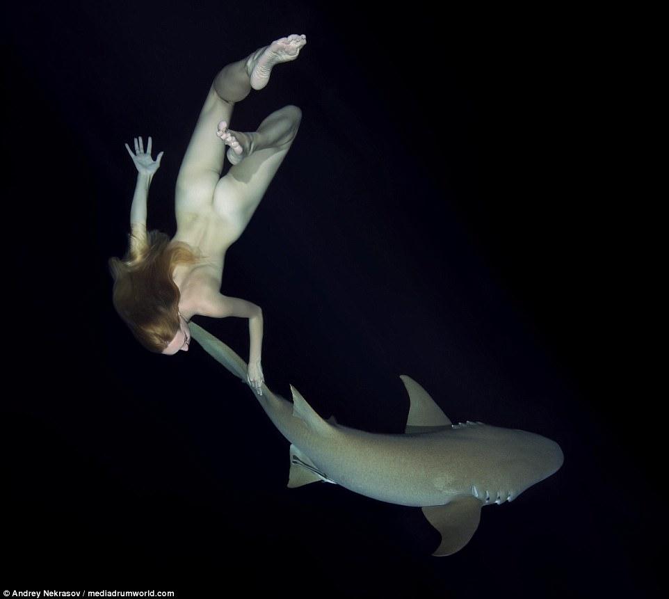 Потрясающие подводные кадры: обнаженная русская модель плавает с акулами