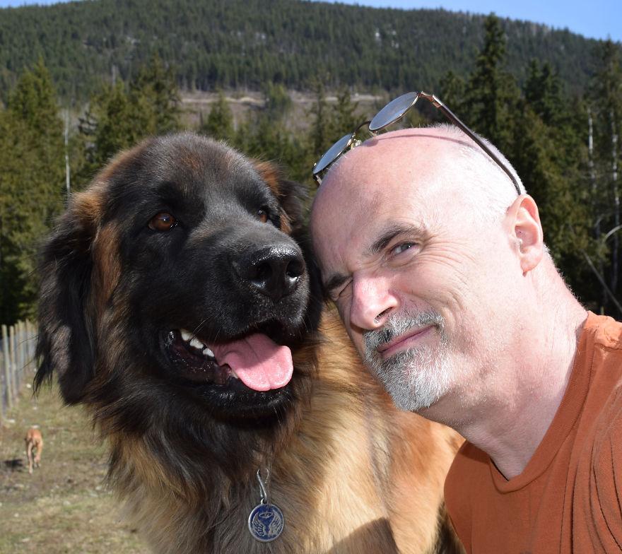 45 собак и волк! Шикарнейшая фото-история о тех, кто имеет сердце